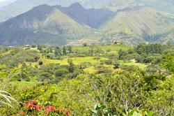 Find Your Passion, Ecuador