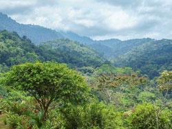 Hike, Costa Rica