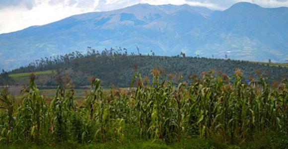 Ecuador Visa and Residence Information