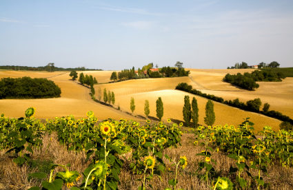 "Life Tastes Good in the ""French Tuscany"""
