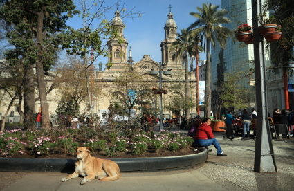 How (and Where) to Meet Expats in Santiago, Chile