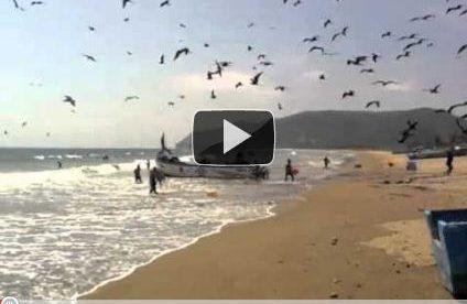 Video Postcard: Puerto Lopez—A Quaint Fishing Village in Coastal Ecuador