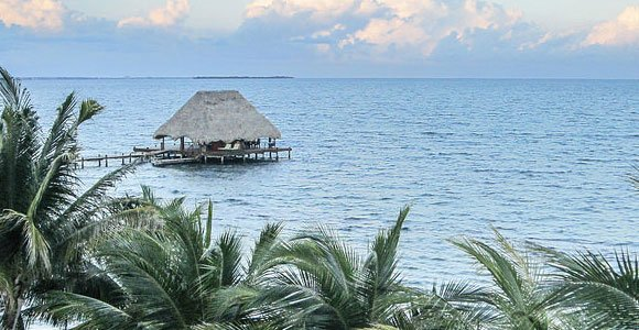 Rolodex: Contacts in Belize