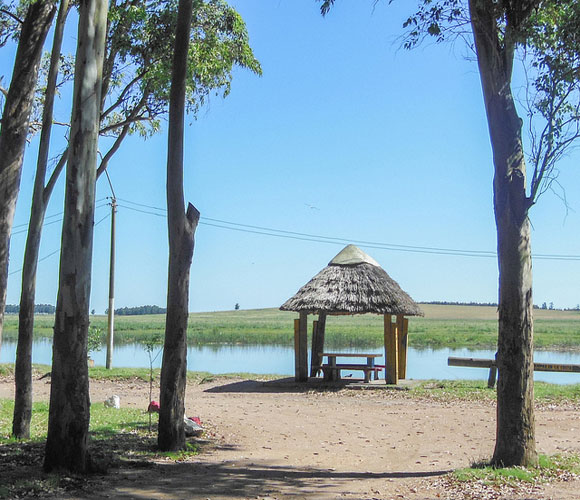 Cost Of Living In Rocha, Uruguay