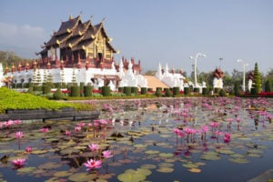 A Relaxed and Fun Lifestyle in Chiang Mai, Thailand