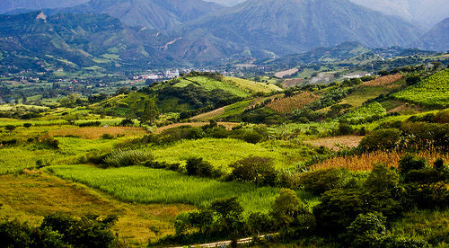 Ecuador: Best Place to Earn an Income?