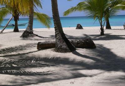 An Unbeatable Deal on a Caribbean Island