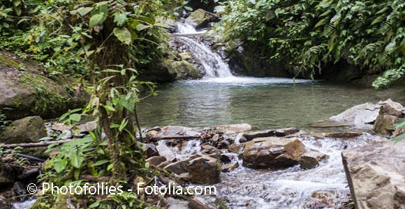 In Harmony with Nature in Mindo, Ecuador