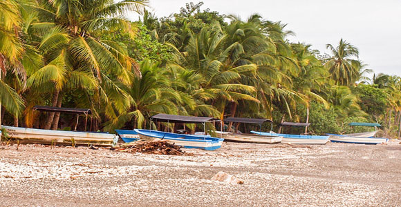 """Popular Costa Rica: Is the """"Pura Vida"""" Lifestyle for You?"""