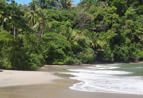 Costa Rica is known for jungle-backed beaches with white sand and turquoise water. This is in Manuel Antonio on the central Pacific coast.