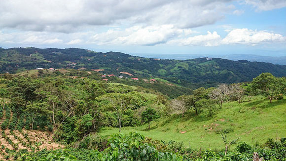 Rent: $225; Electricity: $30…My Low-Cost Bills in Costa Rica