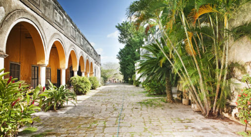 merida mexico - escape the snow and go in to the sunlight