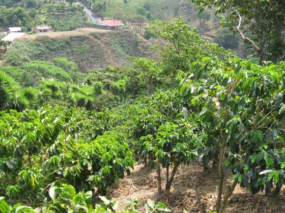 Slide-2-Rural-Costa-Rica-sl