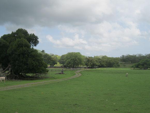 Slide-5-Rural-Costa-Rica-sl