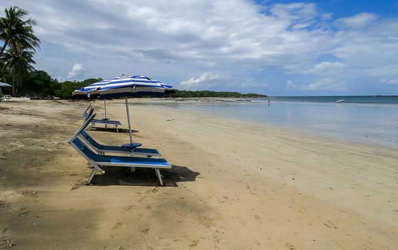 Real Estate in Tamarindo