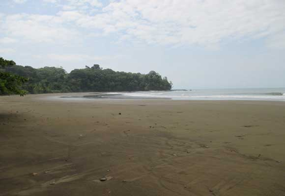 Thanks to a large national park, most of the beaches in the Southern Zone remain undeveloped.