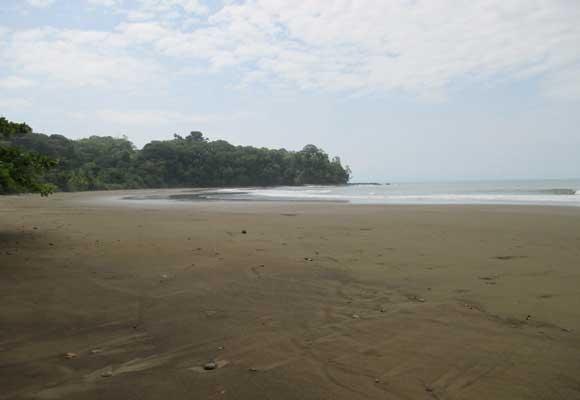 Slide-2-wild-beach