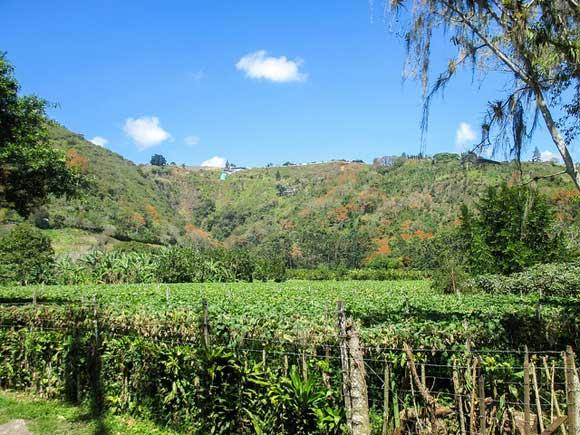 "Enjoying a Simpler Life in Costa Rica's ""Hidden"" Valley"