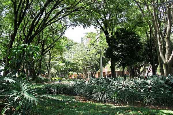 El Poblado Park, Medellin, Colombia