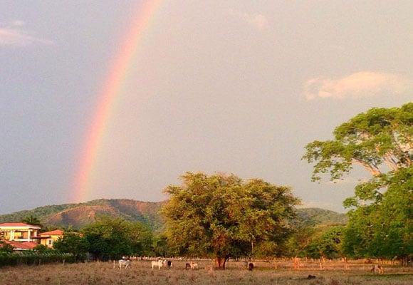 4-Rainbow