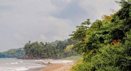 Playa Ballena, Southern Zone, Costa Rica.