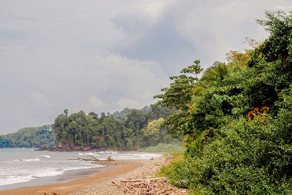 Thriving in Retirement in Costa Rica's Southern Zone