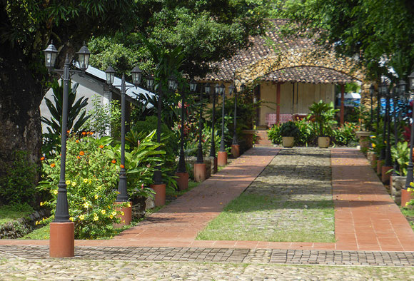 Earning an Extra Income From a Lifelong Passion in Panama