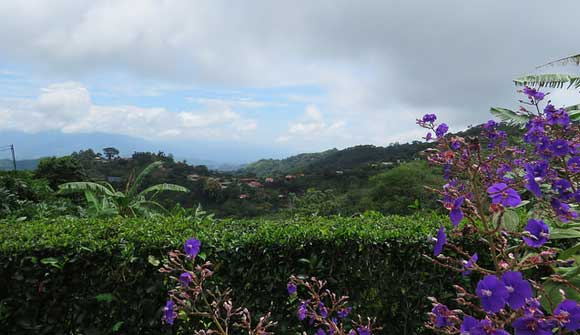 Better Health and Adventure in Costa Rica for Less Than $2,000 a Month