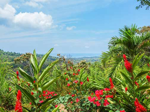 In Pictures: Costa Rica's Wild Beaches and Pacific Views For Less Than $170,000