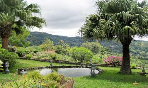 Why I Love My Friendly, Peaceful Panamanian Neighborhood