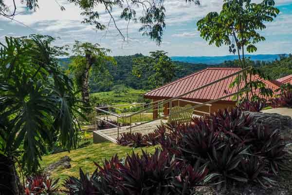 Belize Cayo