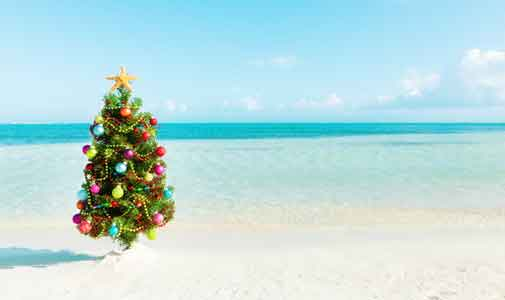 Keeping the Traditions — Expat Christmas Around the World