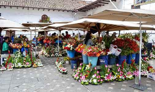 Festivals, Food, and Fun in Cuenca, Ecuador