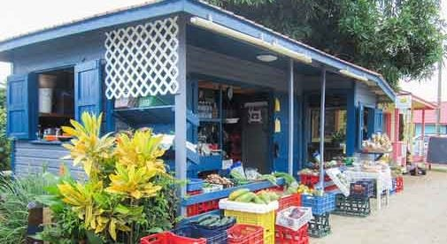 Grocery Shopping Isn't Just an Errand in Belize