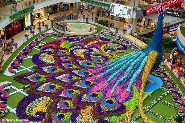 A display in a mall for Medellín's flower festival