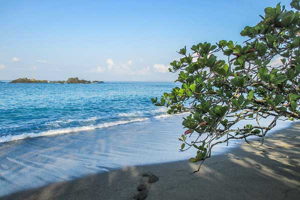 Drake Bay has some of the most spectacular beaches in Costa Rica's Southern Zone