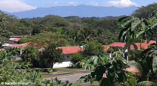 In Photos: My Daily Life in David, Panama