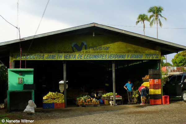 Nanette's local market, where she loads up on fruit and veg