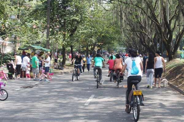 Enjoy Medellín's Climate Along the Ciclovia