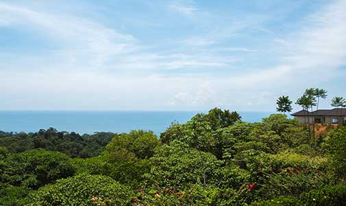 How Much is it to Buy Real Estate in Ojochal, Costa Rica