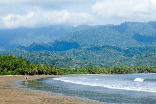 Where the jungle meets the Pacific...Costa Rica's lush Southern Zone coastline.