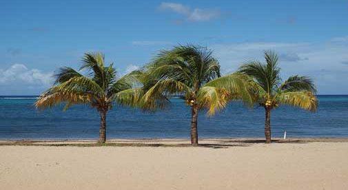 expat dating Belize jobb hastighet dating Bologna