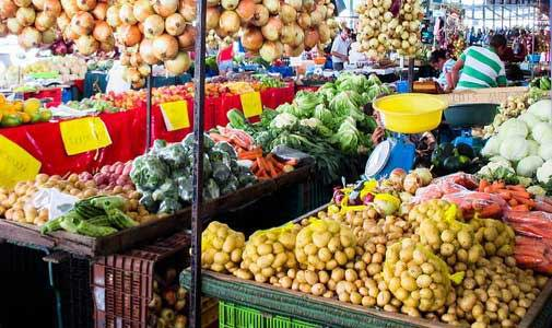 Costa Rica Food: A Gastronomy Tour