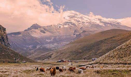 Chimborazo — the World's Tallest Mountain