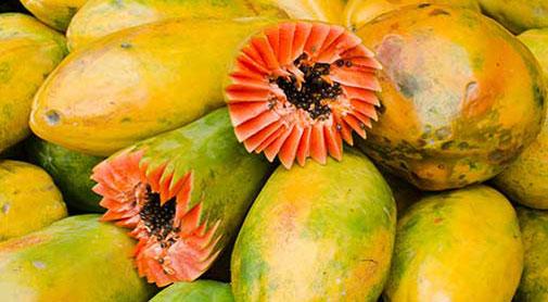 Panama Food: Panama's Tropical Treats