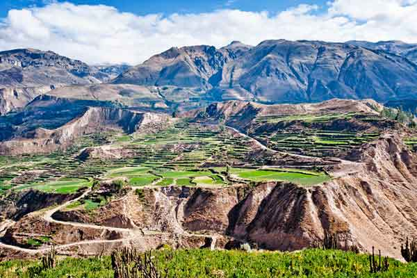 things to do in colca canyon
