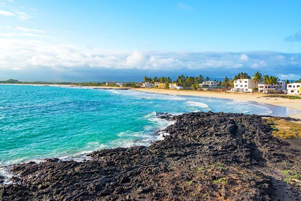 What is the Best Time of Year to go to the Galápagos Islands?