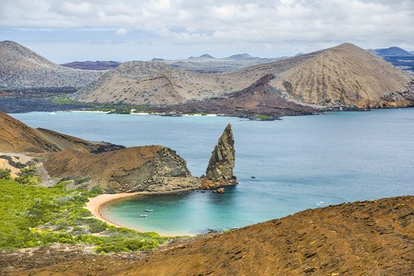 Do you need Vaccinations or a Visa Before You Travel to the Galápagos?
