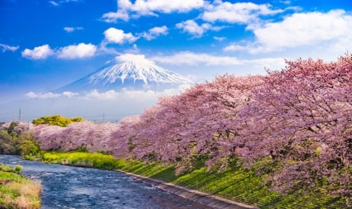 Meaningful, Immersive, Affordable Travel in Japan