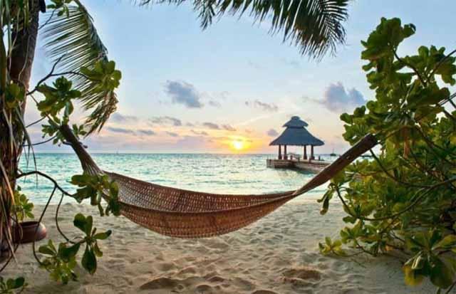 hammock in caye caulker